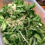 柔らかな畑の春菊!生でサラダで食べるのが大好きです〜♪