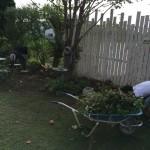 我が家の秋のガーデニングが始まった!!目指すは素敵なお庭時間が過ごせる空間!