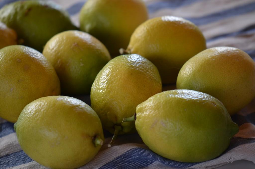 レモン1208